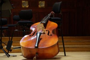 Kontrabass lernen Bassunterricht Kontrabassunterricht Freie Musikschule Wildau MKAW Musikunterricht Kontrabass mieten ausleihen
