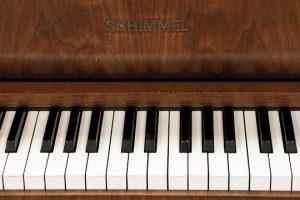 Piano Klavier lernen Klavierunterricht Freie Musikschule Wildau MKAW Musikunterricht Klavier mieten ausleihen E-Piano