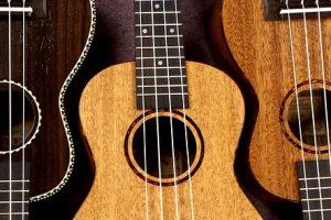 Ukulelenunterricht Ukulele lernen Freie Musikschule Wildau MKAW Musikunterricht Ukulelengruppe